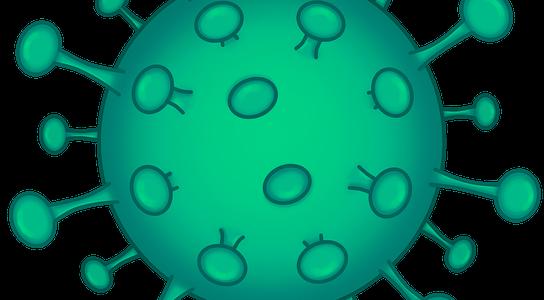 7 DE ABRIL, DIA MUNDIAL DE LA SALUD:  ¿Afecta el coronavirus a la salud sexual?